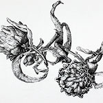 Artichokes drawing by Ruth deMonchaux