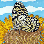 Marbled white screenprint by Ruth deMonchaux